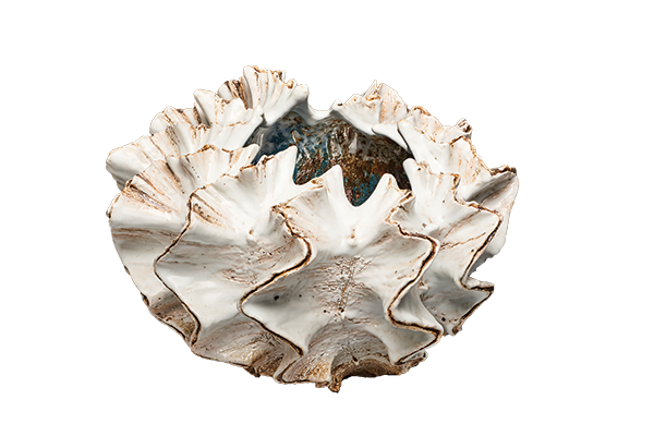 Shell Form (Kai no katachi), 2015. By Koike Shoko (Japanese, b. 1943). Stoneware with glaze. Promised gift of Dr. Phyllis A. Kempner and Dr. David D. Stein.